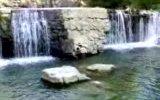 dibekli köyü doğa güzellikleri