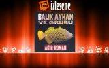 Balık Ayhan Ve Grubu - İstanbul Çiftetellisi