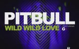 Pitbull feat. G.R.L. - Wild Wild Love