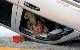 Ehliyeti Bakkaldan Alan Kadın Şoförler